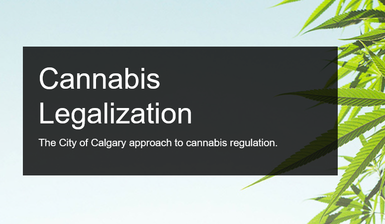 Results from the City of Calgary's Engagement on Cannabis